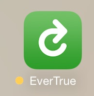evertrue_icon